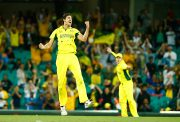 Mitchell Starc 2015 World Cup