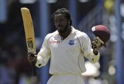 Chris Gayle News