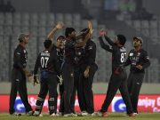 United Arab Emirates cricketers celebrate after the dismissal