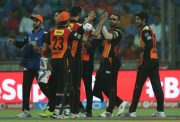 Sunrisers Hyderabad IPL 9