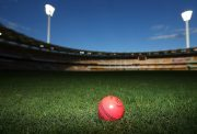 Pink ball India