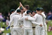 Australian players celebrate New Zealand's Tim Southee being caught during day four of the second cricket Test match between New Zealand and Australia at the Hagley Park in Christchurch on February 23, 2016. AFP PHOTO / MARTY MELVILLE / AFP / Marty Melville (Photo credit should read MARTY MELVILLE/AFP/Getty Images)