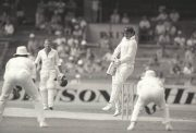 Allan Border vs India