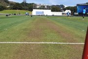 Basin Reserve Pitch