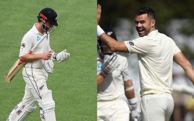 Kane Williamson and James Anderson
