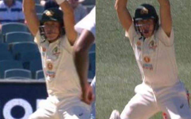 Twitter Trolls Marnus Labuschagne For Calling No Run While Leaving The Ball In Adelaide Test Against India
